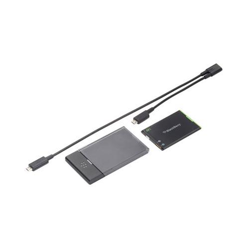 Original BlackBerry Bold 9790/ 9900, Torch 9860/ 9850 J-Series Replacement Battery & Charger w/ Micro USB Y-Cable, ACC-38580-301 - Black