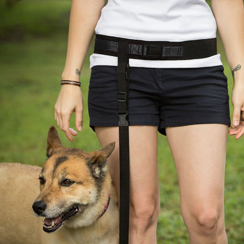 Pet Leash, [Black] Hands Free Adjustable Nylon Dog Leash - Great for Running, Jogging, Walking, Hiking and More!